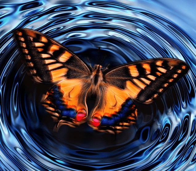 Butterfly Effect. Effects of bad credit.