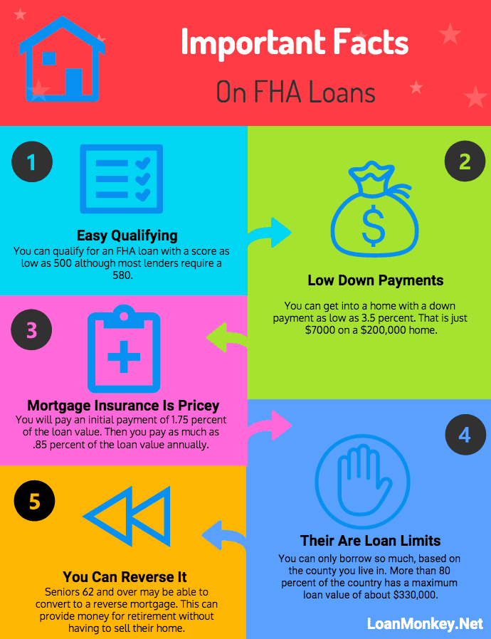 FHA loan facts infographic.