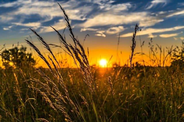 A summer sunset.